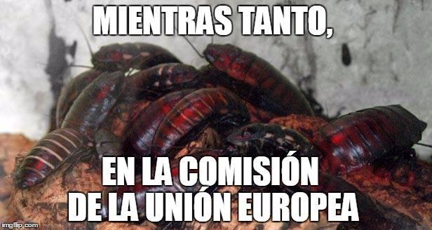 cucarachasUnionEuropea