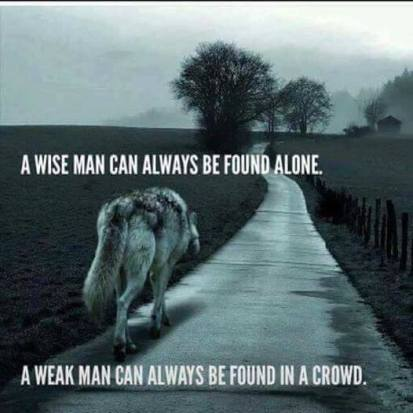 wise-man-can-always-be-found-alone.jpg