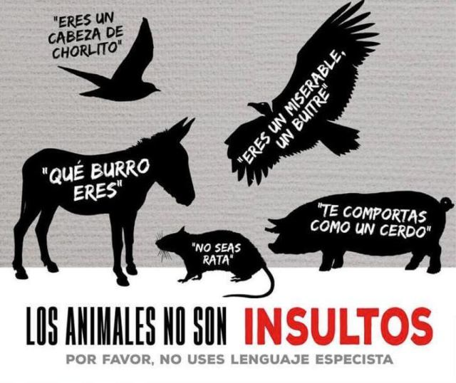 veganos-los-animales-no-son-insultos-lenguaje-especista.jpg