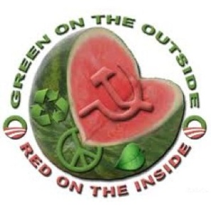 Watermelon-green-outside-red-inside