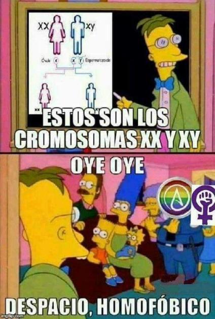 lgbt-cromosomas-xx-xy